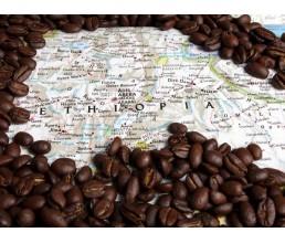 Путешествие в мир кофе (ЭФИОПИЯ)