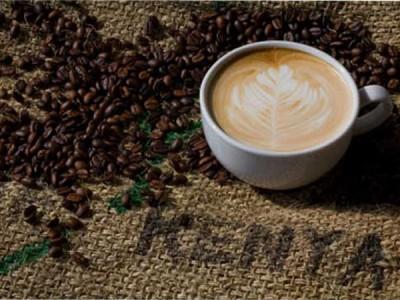 Путешествие в мир кофе (КЕНИЯ)