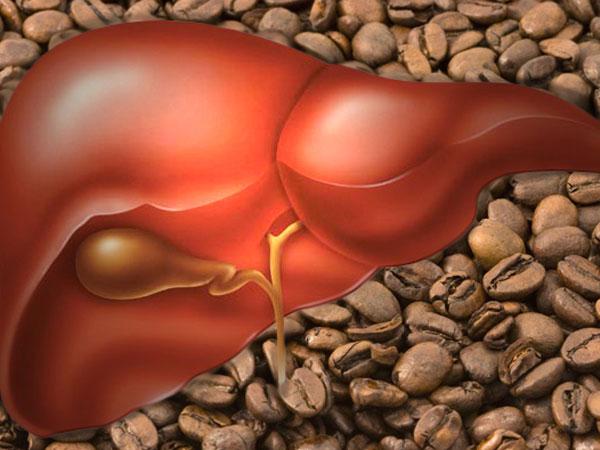 Воздействие кофе на печень