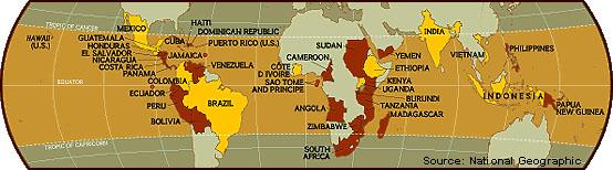 Карта стран производителей кофе